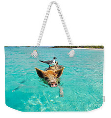 Staniel Cay Swimming Pig Seagull Fish Exumas Weekender Tote Bag