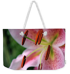 Stargazer Weekender Tote Bag by Rona Black