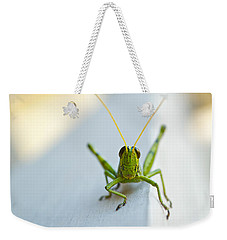 Staring At Me Weekender Tote Bag by Shelby  Young