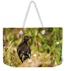 Starling Weekender Tote Bag by Guido Montanes Castillo
