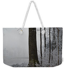 Steep And Frost Weekender Tote Bag by Felicia Tica