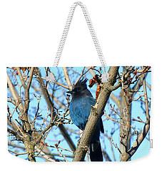 Steller's Jay In Winter Weekender Tote Bag