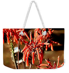 Weekender Tote Bag featuring the photograph Strange Delight by Debra Forand