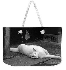 Street Cat Weekender Tote Bag
