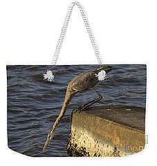 Weekender Tote Bag featuring the photograph Stretch - Great Blue Heron by Meg Rousher