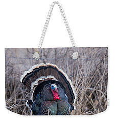 Weekender Tote Bag featuring the photograph Strutting Turkey by Michael Chatt
