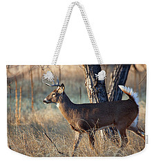 Weekender Tote Bag featuring the photograph Strutting Buck by Jim Garrison