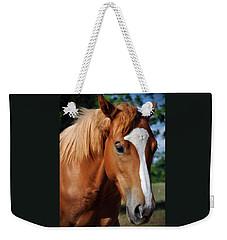 Stud Horse  Weekender Tote Bag