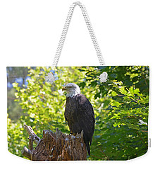 Weekender Tote Bag featuring the photograph Stumped by David Porteus