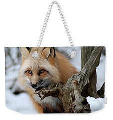 Stunning Sierra Weekender Tote Bag by Richard Bryce and Family