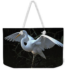 Weekender Tote Bag featuring the photograph Successful Hunt by Charlotte Schafer