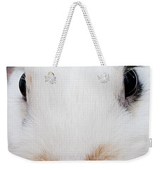 sugar the easter bunny 1 -A curious and cute white rabbit close up Weekender Tote Bag