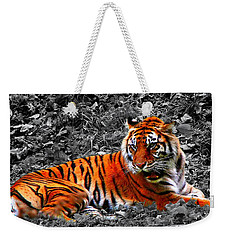 Sumatran Tiger Weekender Tote Bag by Davandra Cribbie