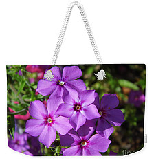 Weekender Tote Bag featuring the photograph Summer Purple Phlox by D Hackett