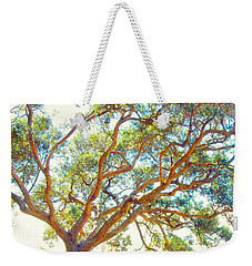 Weekender Tote Bag featuring the photograph Summertime Tree by Jocelyn Friis