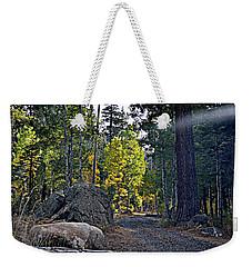 Sun Beam Weekender Tote Bag
