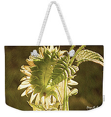 Weekender Tote Bag featuring the photograph Sun-lite Sunflowwer by Donna Brown