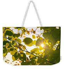 Weekender Tote Bag featuring the photograph Sun Shining Through Leaves by Chevy Fleet