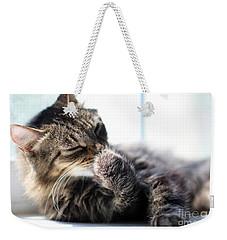 Weekender Tote Bag featuring the photograph Sunbathing by Todd Blanchard