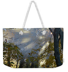 Weekender Tote Bag featuring the photograph Sunbeam Morning by Dianne Cowen