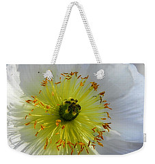 Weekender Tote Bag featuring the photograph Sunburst by Deb Halloran