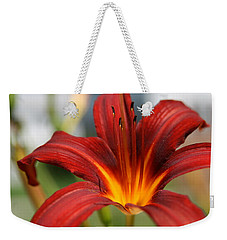 Weekender Tote Bag featuring the photograph Sunburst Lily by Neal Eslinger