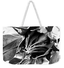 Weekender Tote Bag featuring the photograph Sunflower Beginning by Sandi OReilly