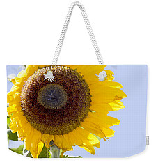 Weekender Tote Bag featuring the photograph Sunflower In The Blue Sky by David Millenheft