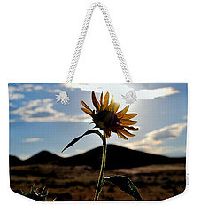 Weekender Tote Bag featuring the photograph Sunflower In The Sun by Matt Harang