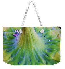 Sunflower...moonside 1 Weekender Tote Bag by Daniel Thompson