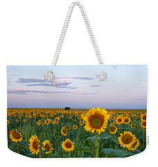 Sunflowers At Sunrise Weekender Tote Bag by Ronda Kimbrow