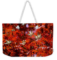 Sunlit Japanese Maple Weekender Tote Bag by Rona Black