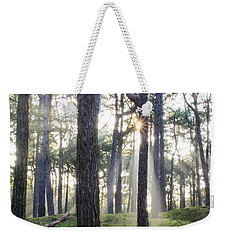 Sunlit Trees Weekender Tote Bag by Spikey Mouse Photography
