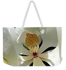 Weekender Tote Bag featuring the photograph Sunny And Shy Magnolia by Caryl J Bohn