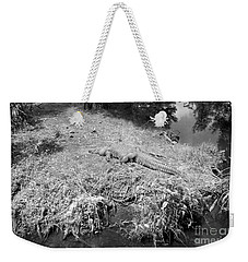 Weekender Tote Bag featuring the photograph Sunny Gator Black And White by Joseph Baril