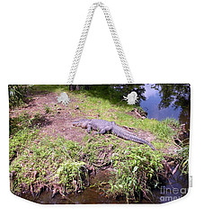 Weekender Tote Bag featuring the photograph Sunny Gator  by Joseph Baril