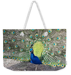 Weekender Tote Bag featuring the photograph Sunny Peancock by Caryl J Bohn