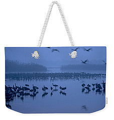 Sunrise Over The Hula Valley Israel 4 Weekender Tote Bag