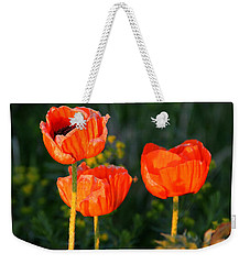 Weekender Tote Bag featuring the photograph Sunset Poppies by Debbie Oppermann
