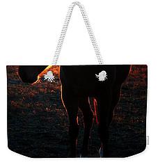 Weekender Tote Bag featuring the photograph Sunset Splendor by Robert McCubbin