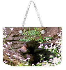 Sunshine Bear Weekender Tote Bag by Adam Olsen