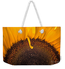Weekender Tote Bag featuring the photograph Sunshine by Jan Bickerton