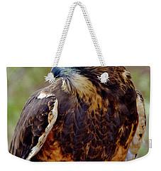 Swainson's Hawk Weekender Tote Bag