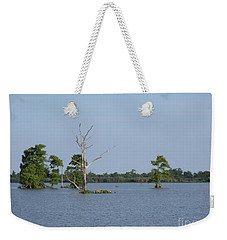 Weekender Tote Bag featuring the photograph Swamp Cypress Trees by Joseph Baril