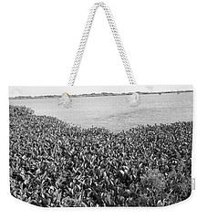 Weekender Tote Bag featuring the photograph Swamp Hyacinths Water Lillies Black And White by Joseph Baril
