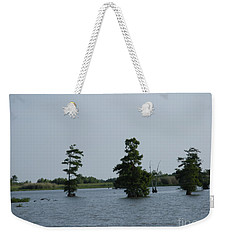 Weekender Tote Bag featuring the photograph Swamp Tall Cypress Trees  by Joseph Baril