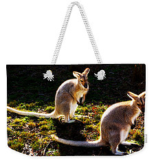 Swamp Wallabies Weekender Tote Bag by Miroslava Jurcik