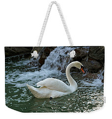 Swan A Swimming Weekender Tote Bag