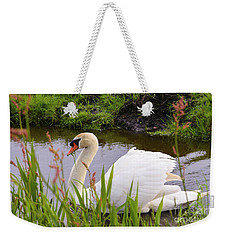 Swan In Water In Autumn Weekender Tote Bag