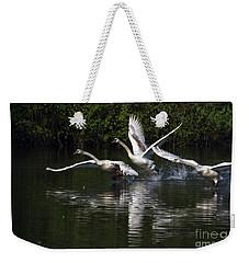 Swan Take-off Weekender Tote Bag